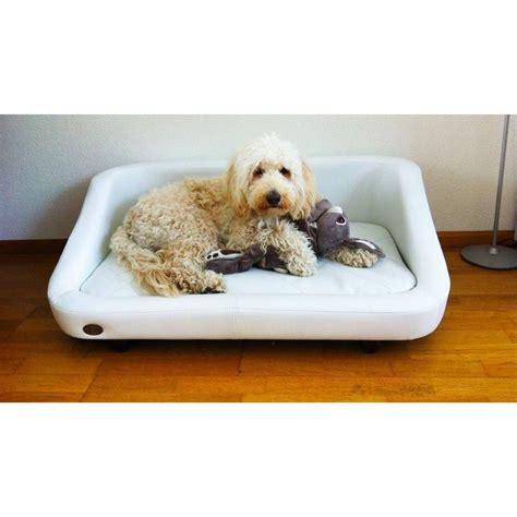 répulsif canapé repulsif chien pour canape 28 images canap 233 pour