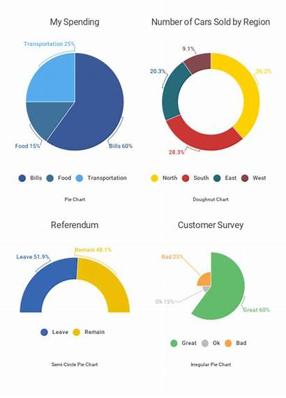 Pie Chart Charts Data Create Examples Bar