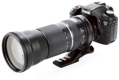 Best Lenses For Wildlife Photogaphy  What Digital Camera