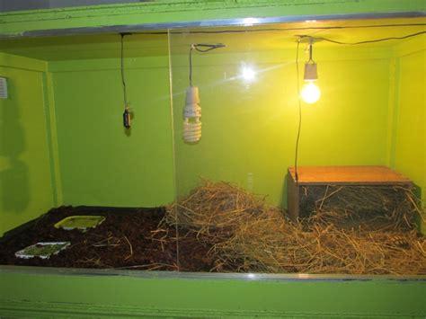 presentation de ma sulcata et de terrarium