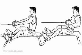 Fig  10  Seated low ca...