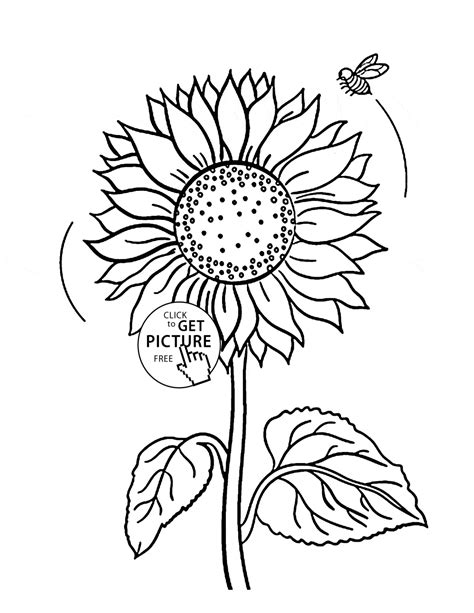 Cute sunflower and bee coloring page for kids, flower