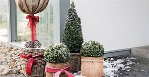 Balkon Im Winter Gestalten : pflanzen f r balkon und terrasse schley 39 s blumenparadies ~ Markanthonyermac.com Haus und Dekorationen