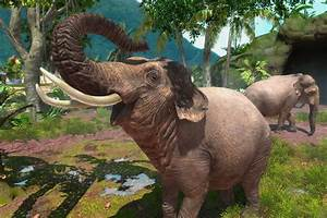 Zoo Tycoon Will Let You Help Real Life Animals Polygon