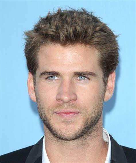 Liam Hemsworth Short Straight Casual Hairstyle   Medium
