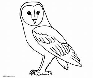 Snowy Owl Color Page - Barn Owl Coloring Pages Owl ...