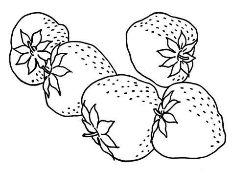 Tasteful Strawberry Fruit Coloring Pages