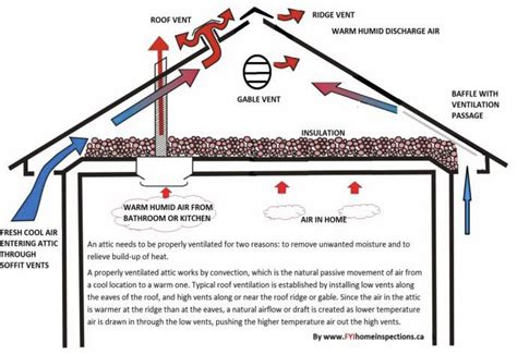 Proper Attic Ventilation Tips From Burke Emergency