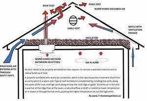 Proper Attic Ventilation  Tips From Burke Emergency
