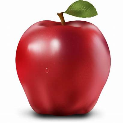 Apple Apples Fruits Health Fruit Icon Blood