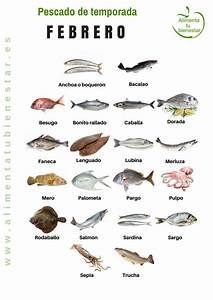 Pescado De Temporada  Descarga El Calendario Para Todo El