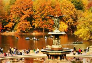 New York Central Park Fall