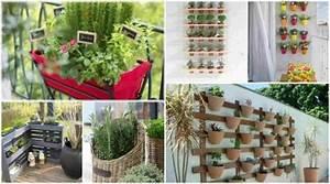 Balkon bepflanzen diese tipps retten sie vor enttauschung for Katzennetz balkon mit caleta garden apartments