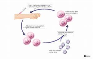 Gene Therapy Cure