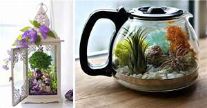 8, Upcycled, Objects, That, Make, Uniquely, Beautiful, Terrariums