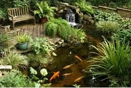 Water Garden Water Gardens 16 L