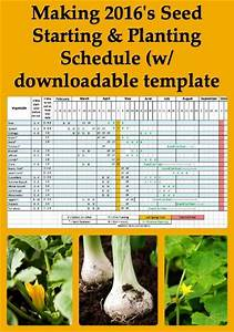 Teacher Schedule Template 21 Best Images About Schedule Templates On Pinterest