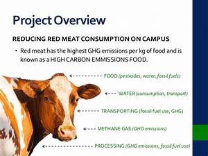 UBC Sustainability - Reducing Red Meat Consumption on Campus