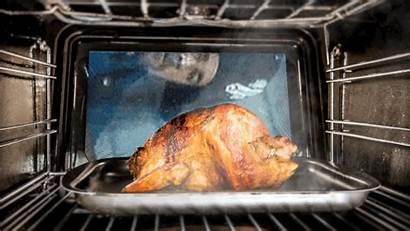 Turkey Roasting Gifs Javert Fried Roasted Giphy