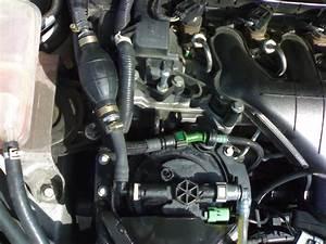 Purge Filtre A Gasoil : purge circuit gasoil ford focus ~ Gottalentnigeria.com Avis de Voitures
