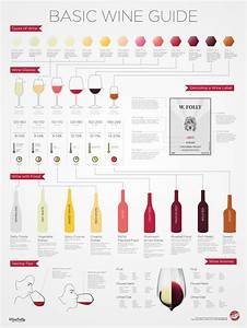 The Basic Wine Guide Infographic  U2022 Infographics