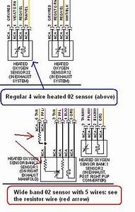 Wiring Database 2020  30 5 Wire O2 Sensor Wiring Diagram