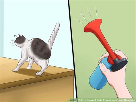 ways  prevent cats  jumping  counters wikihow