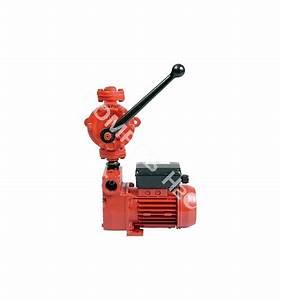 Pompe A Fioul Electrique : pompe gasoil lectrique et manuelle japy pompes h2o ~ Melissatoandfro.com Idées de Décoration