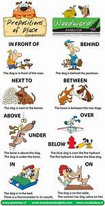 Chapter 5  Prepositions