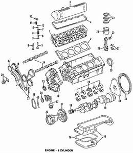 Timing Chain Rails    Are These Parts The Same