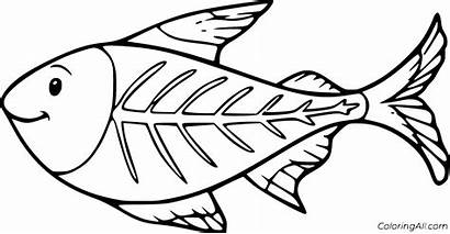 Fish Ray Coloring Coloringall Printable Cartoon Easy