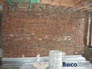 Mur En Brique Intérieur : finition mur int rieur en vielles briques ~ Melissatoandfro.com Idées de Décoration