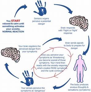 Sensory Reaction Loop