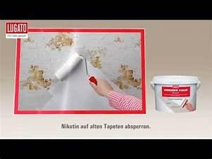 Weißes Haus Radebeul : weisses haus sperrgrund von lugato youtube ~ A.2002-acura-tl-radio.info Haus und Dekorationen