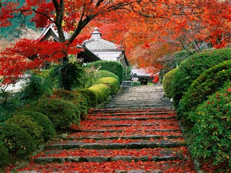 Beautiful Autumn Garden by Autumn Colors Beautiful Places Japanese Gardens
