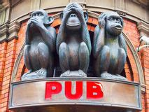 three wise monkeys stock royalty free