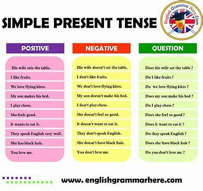 Tense Present Negative Simple Positive Examples Question
