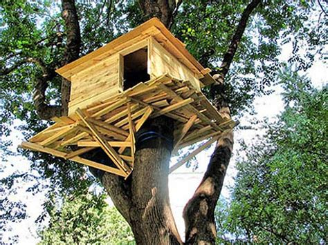 Simple Backyard Treehouse Designs For Kids