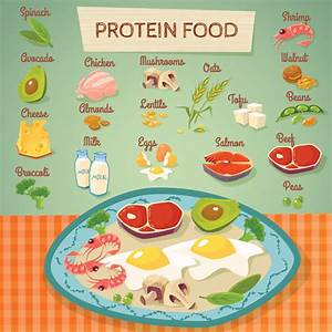 Protein 101  The Ultimate Guide To Proteins  U2022 Dietbros Com