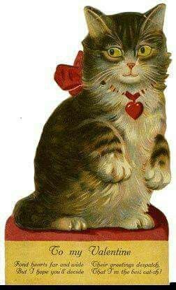 pin  chelle  cats vintage cat victorian valentines