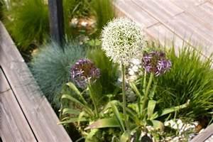 Terrasse En Anglais : terrasse 19 photos titceline ~ Preciouscoupons.com Idées de Décoration