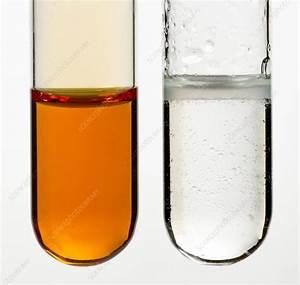 Bromine Water Test For Alkenes - Stock Image - C029  0955