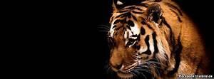 Titelbilder Facebook Ideen : tiger 412 facebook titelbilder facebook likes ~ Lizthompson.info Haus und Dekorationen