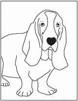 Basset Hound Coloring Kleurplaten Bassett Dog Cachorros Desenhos Colouring Pintar Printable Colorir Hounds Cachorrinhos Desenhar Visitar Designlooter Kleurplaat Template Salvo sketch template