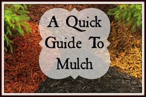 Mulch Types Guide
