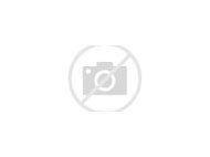 Purple Paper Pom Poms