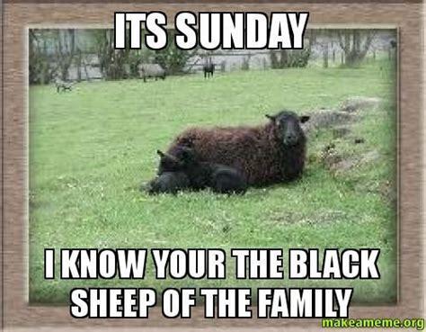 Sunday Meme - best 25 sunday meme ideas on pinterest nope meme sunday quotes funny and sarcastic memes
