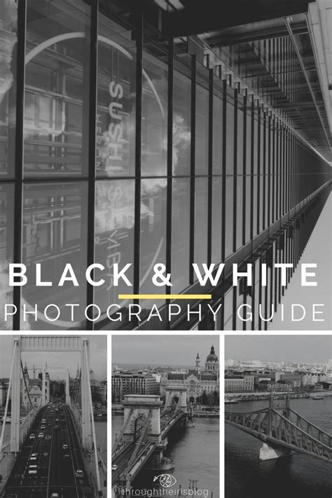 black white photography   city  pictures