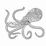 Squid Coloring Giant Getdrawings Adults sketch template