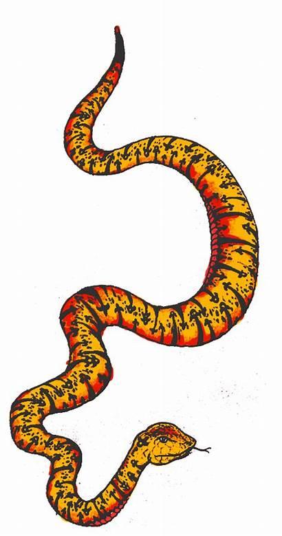 Clipart Snake Colourful Transparent Webstockreview